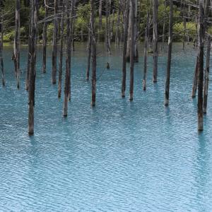 青い池,北海道,綺麗,神秘的,Line着せかえ